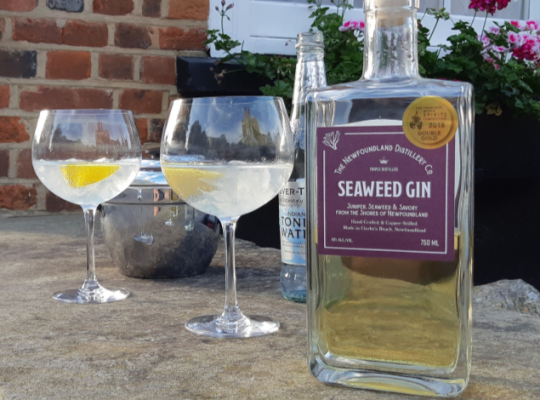 a bottle of Newfoundland seaweed gin with two drinks poured up into in wine glasses next to it