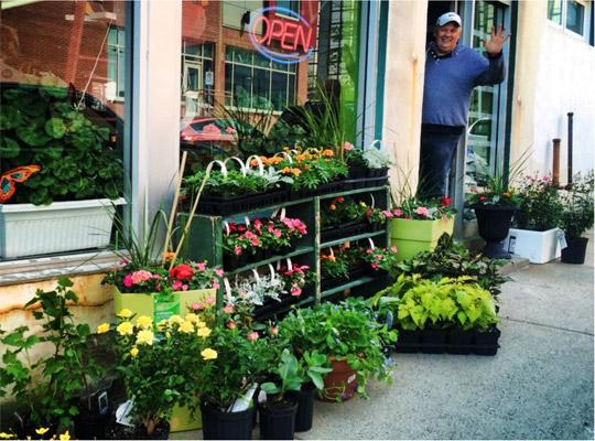 hanging baskets for sale on the sidewalk outside the shop. a man waves from the shop entrance.