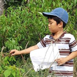 #playoutdoors 3 - forage in PCSP