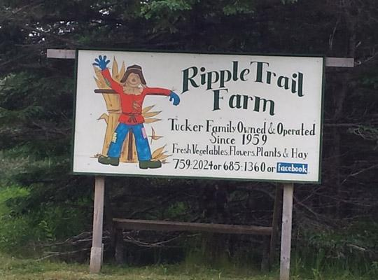 Ripple Trail Farm sign