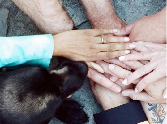 a group of people holding hands and a dog