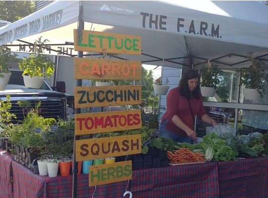 beautiful booth by the FARM filled with produce tended by a Farmer at the Farmers Market.  bright signage - Lettuce Carrot Zucchini Tomatoes Squash Herbs -