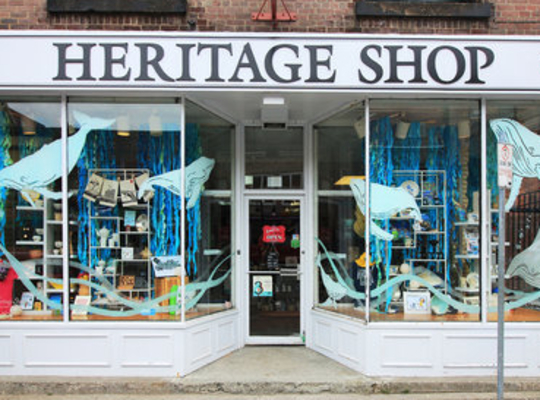 Heritage Shop with whales painted on the windows, downtown St. John's