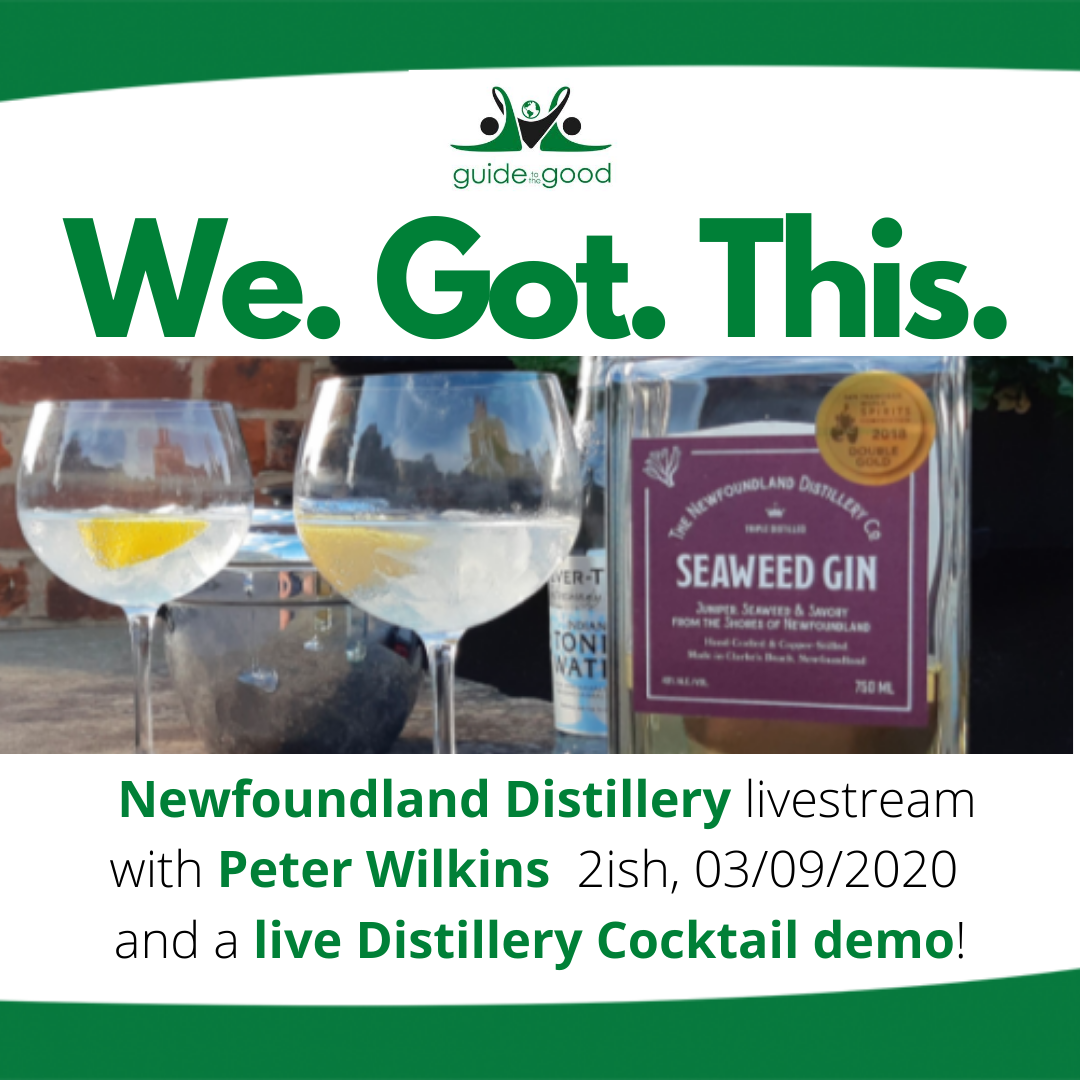 square box with text We Got This and an image of Newfoundland Distillery Seaweed Gin and the text - livestream with Peter Wilkins September 3, 2020