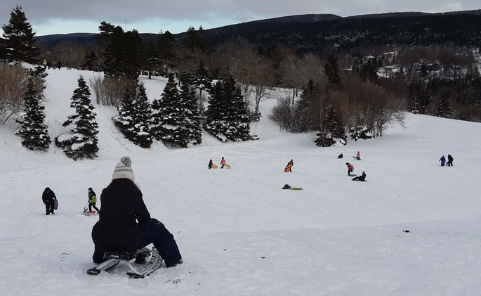 view at the top of a sliding hill in Bowring Park, St. John's. children on slides at various points on the hill.  blue-gray sky and snow covered trees in the background